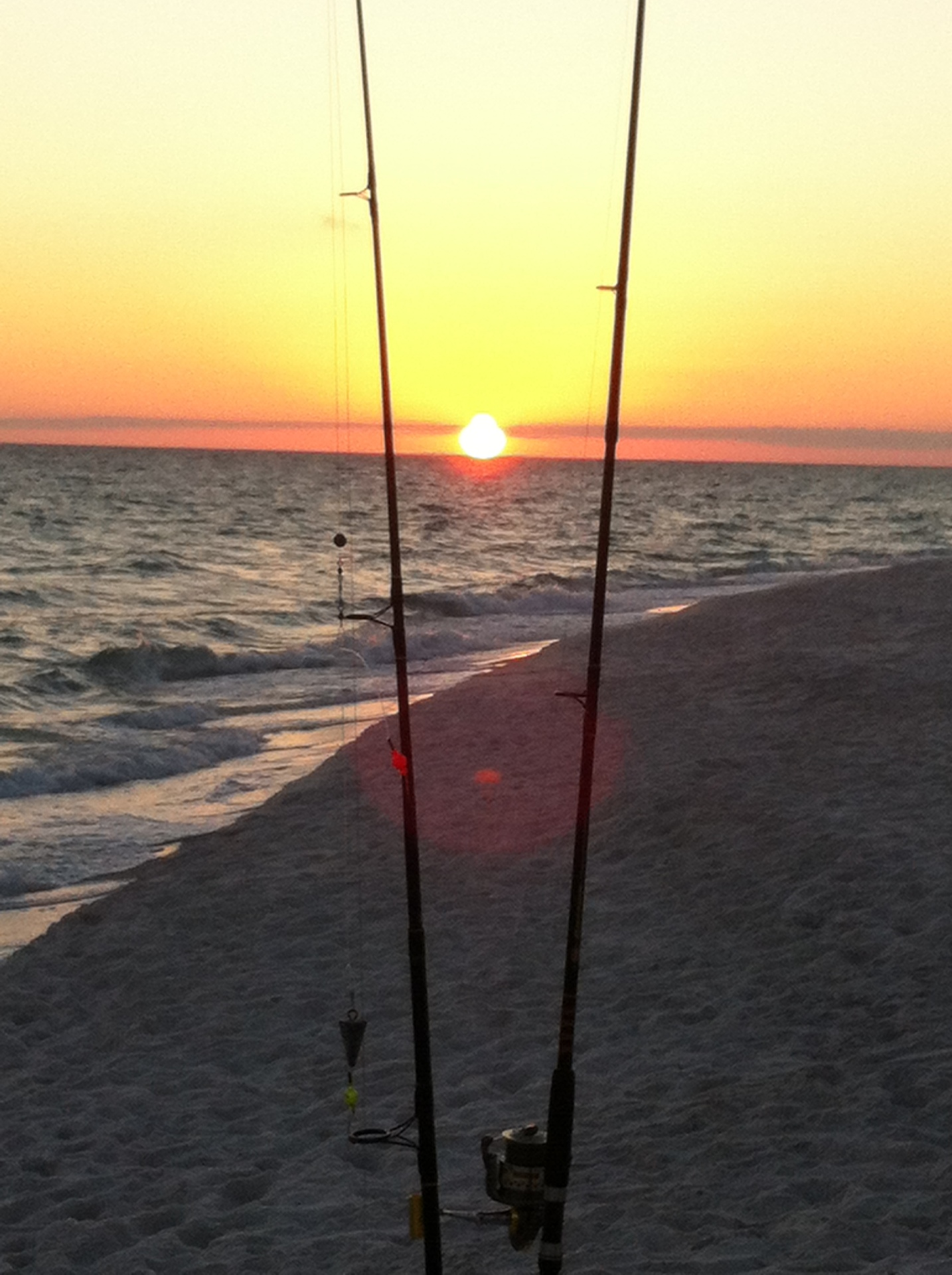 Fishing poles on beach